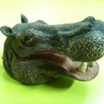 Cabeza de hipopótamo.